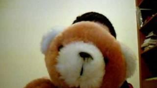Burito The Angry  Teddy Bear