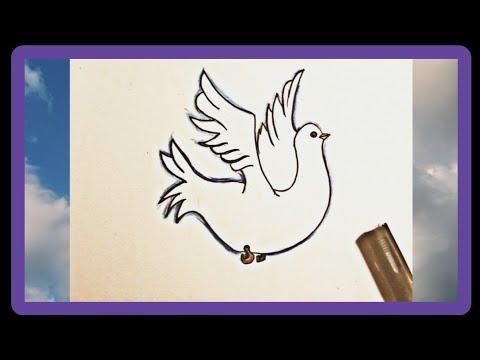 تعلم طريقة رسم حمامة تعليم الرسم للاطفال تعليم الرسم للمبتدئين Youtube