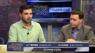 Pegasus World Cup Contender Profile - Gunnevera