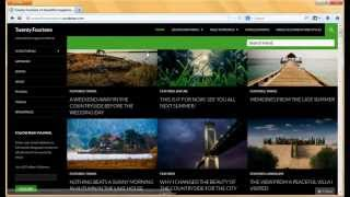 WordPress 3.8 Theme - Twenty Fourteen Demo