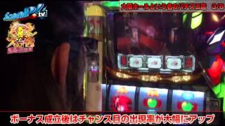 真・スロ番 〜春の陣〜 vol.3 第2/2話