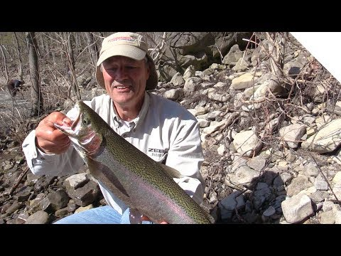 Niagara River Steelhead From Shore With The New Stingeye Spinner