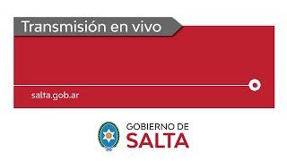 En vivo. Coronavirus: el gobernador Gustavo Sáenz, realiza anuncios