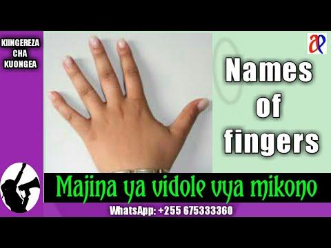 Download #JifunzeKiingereza Majina ya vidole vya mikono (Jifunze Kiingereza na Azari Eliakim)