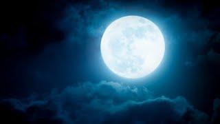 30 Minute Deep Sleep Music ★︎ Power Nap ★︎ Sleep Fast Music, Stress Relief