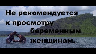 драма до слез/дети горы 2016