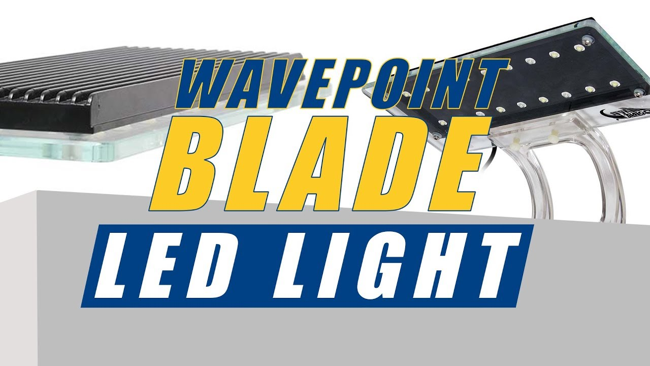Wave Point Blade LED Lights: What YOU Need to Know Thumbnail