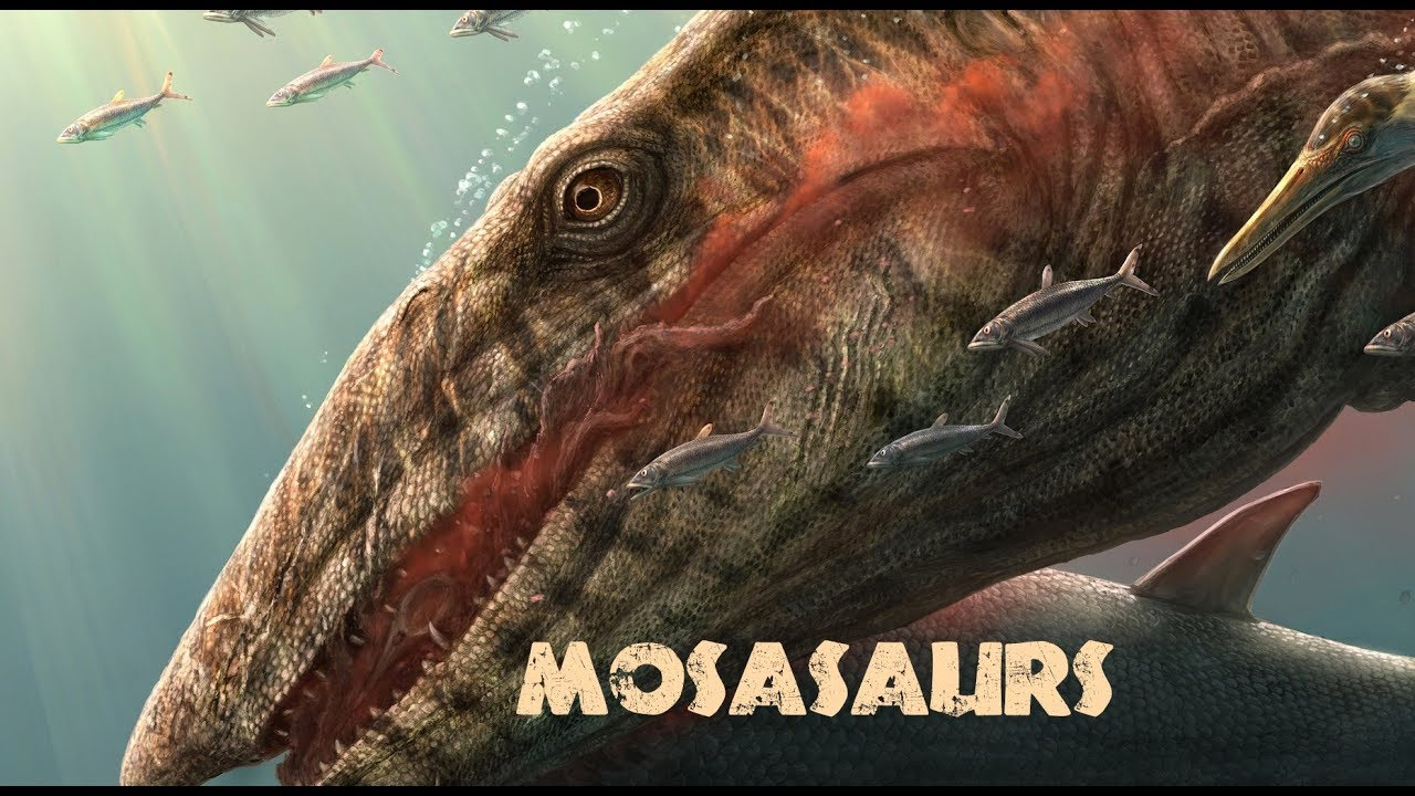 Download REAL Sea Monsters - Ressurecting Mosasaurs for Savage Ancient Seas