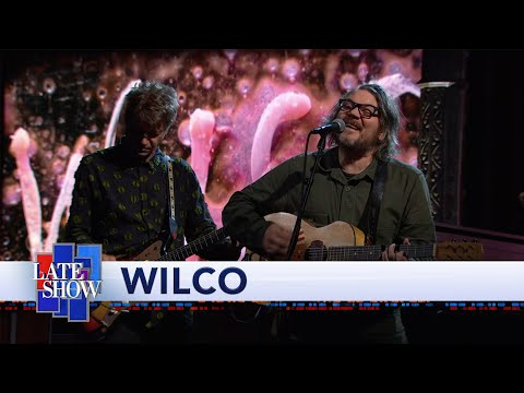 """Wilco - """"Everyone Hides"""" Performance"""
