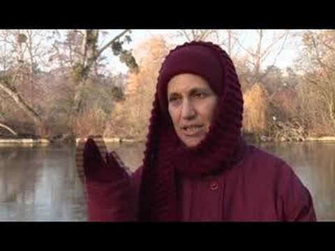 Becoming a Western Buddhist nun