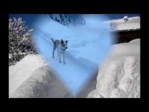 Advent Bei Uns Im Tiroler Gailtal