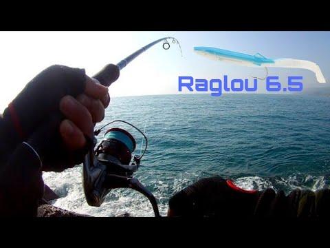 Fishing technique - Bombarda and raglou (little tunny)