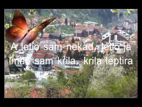 Tutti Frutti-Krila leptira