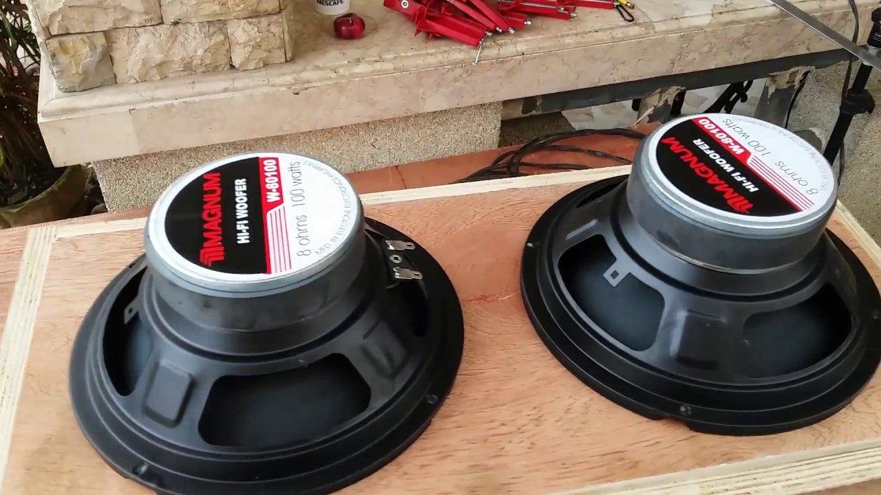 DIY Dual Driver Subwoofer for Car and Home