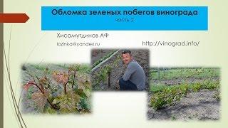 Обломка винограда, часть 2 Хисамутдинов АФ, Красохина СИ