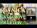Mtg: Exclusive Guilds of Ravnica Preview - Camraderie!