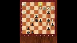 Что такое позиционная игра? Защита Нимцовича. Ботвинник. Комбинация. Шахматы. Евгений Гринис