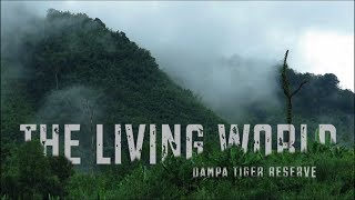 The Living World_Dampa Tiger Reserve
