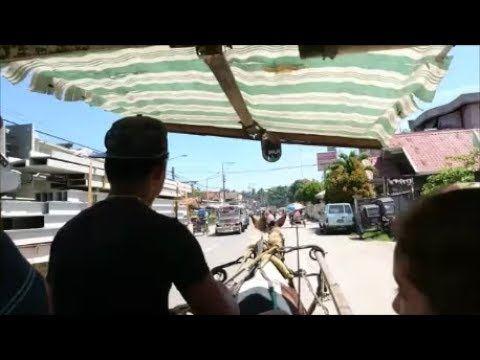 Horse & Cart Ride Transportation In The Philippines Iligan City Centre Mindanao
