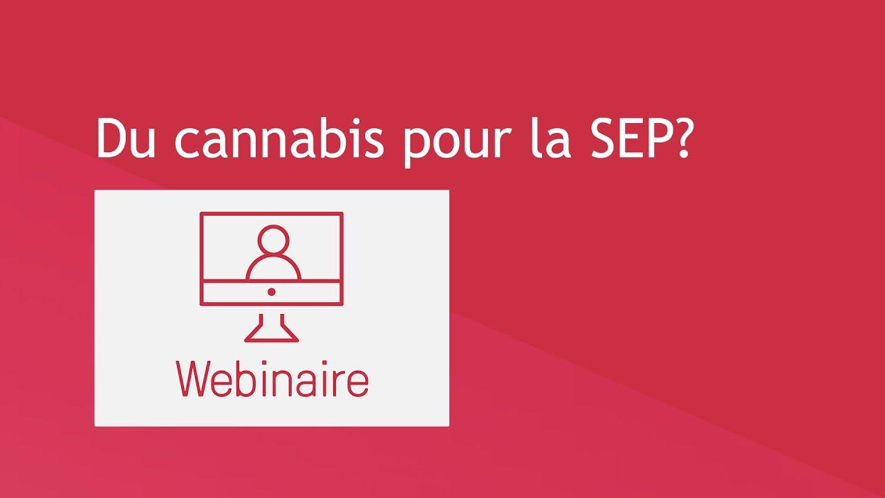 Du cannabis pour la SEP?