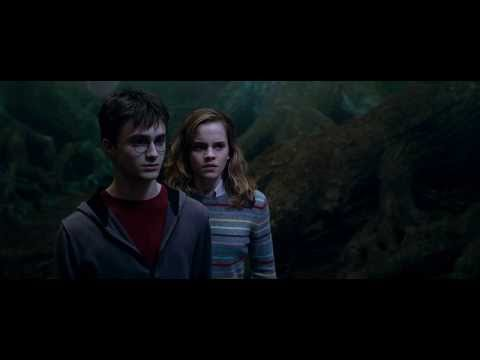 Harry Potter and the Order of the Phoenix....