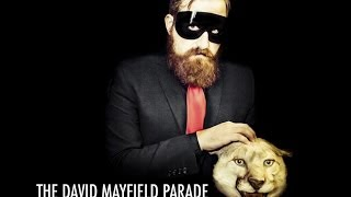 David Mayfield Parade ALBUM REVIEW