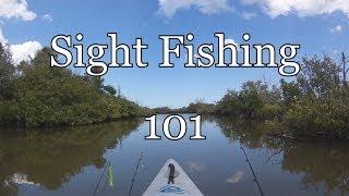 Sight Fishing 101 Lesson