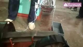 Школьники из города Сулюкта сделали макет, на котором показали добычу угля