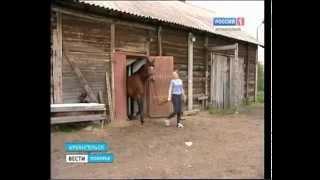 видео солярий в приморском районе
