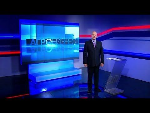 «Вести Алтай. Агробизнес». Программа за 23 ноября 2019 года