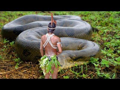 STRANGE Discoveries In The Amazon
