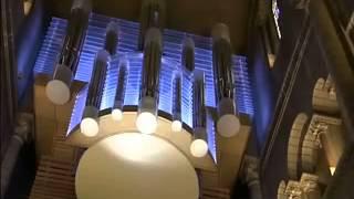 Ma Terre- Ors et trésors de la musique : L'orgue