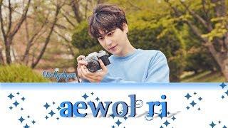 Gambar cover KYUHYUN 규현 '애월리 (Aewol-ri)' Lyrics Color Coded (Han/Rom/Eng) Easy Lyrics