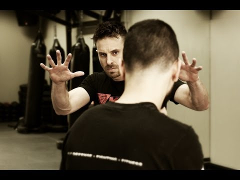 The Fundamentals of Krav Maga Fighting Stance and Self Defense Tactics w/ AJ Draven