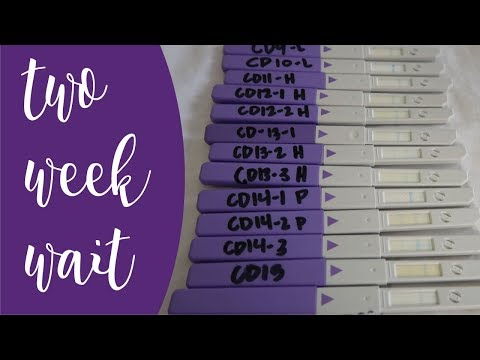 PREGNANCY SYMPTOMS? OPK PROGRESSION? | TWW UPDATE | The Hebert House