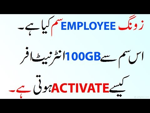 What Is ZONG Employee Sim Explained thumbnail