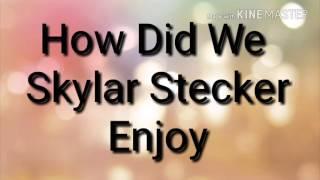 How Did We Skylar Stecker Lyrics