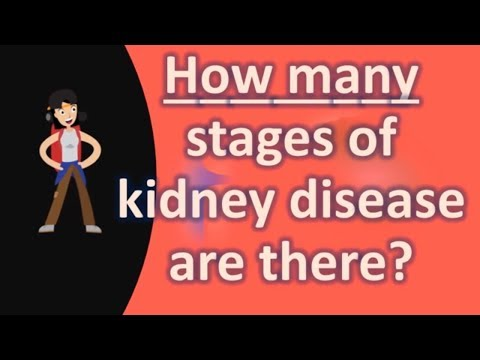 how-many-stages-of-kidney-disease-are-there-?