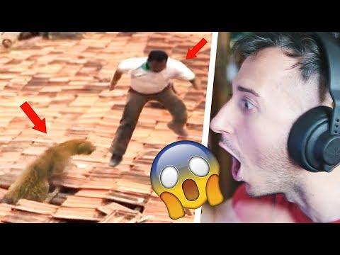 NON TE L'ASPETTERESTI MAI IL FINALE DI QUESTO VIDEO !!!