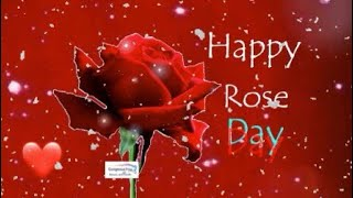 Happy Rose Day 2019,Rose Day Whatsapp Status Video,Happy Valentine's Day 2019|Gorgeous You |