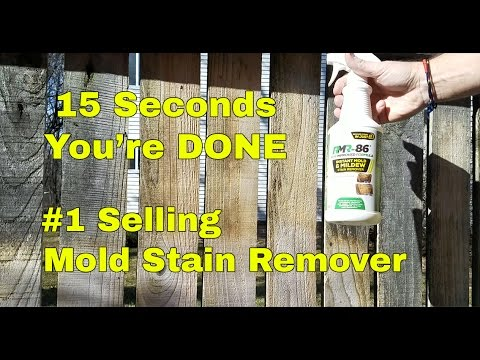 RMR 86 Mold Stain Remover Plus Blocker