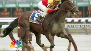 شاهد.. أغلى حصان في العالم ثمنه 70 مليون دولار