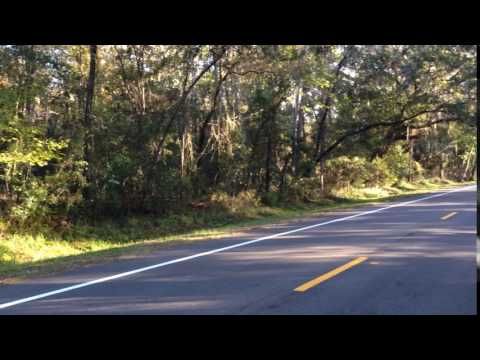 Save William Bartram Scenic Highway, N.W. St. Johns County, FL