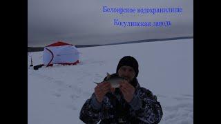 Зимняя рыбалка Белоярское водохранилище Косулинская заводь