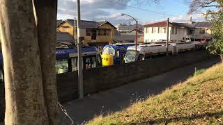 【小ネタ集】チャギントン列車をちょっとだけ眺めてきたPart1