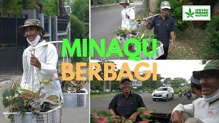 Bantu Borong Pikulan Tanaman Hias Yuk