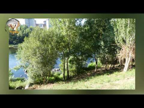 OURENSE EN  FOTOS  HD 1080  50P