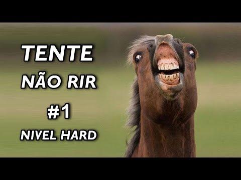Tente Não Rir Nível Hard #1