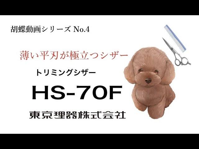 【動画】HS70F