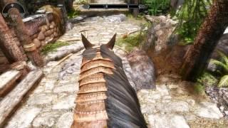 TES V: Skyrim Reloaded #35 потестим патч